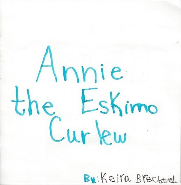 Annie the Eskimo Curlew
